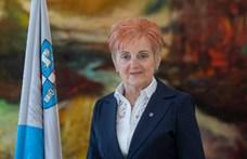 Koronavírus-fertőzésben hunyt el a DK dunaújvárosi képviselője, Utassy Éva