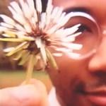 Zene emésztéshez: Toro Y Moi - Still Sound (videó)