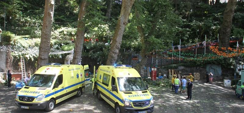 Fesztiválozókra dőlt egy fa Madeirán, legalább 11 halott van
