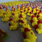 Máris felsorakoztak a húsvéti csirkekatonák - fotó