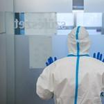 Kórházi ágy bőven van, személyzetet biztosítani mellé óriási erőfeszítést igényel – mondta a Szegedi Tudományegyetem kancellárja
