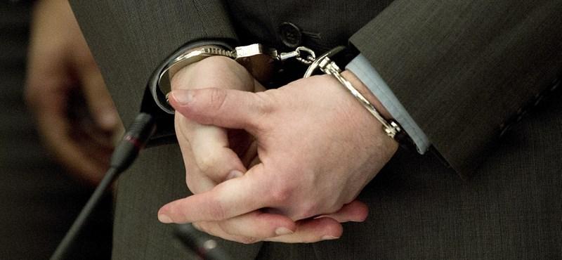 Délben döntenek Habony őrizetbe vett ügyvédjének sorsáról