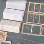 """Több mint 100 bálnát találtak összezsúfolva egy oroszországi """"bálnabörtönben"""" – videó"""