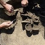 Hatalmas bronzkori temetőre bukkantak Nógrád megyében