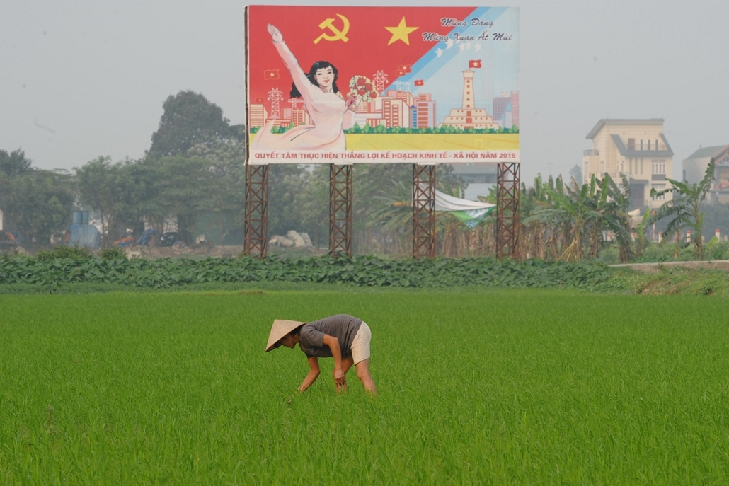 afp. hét képei - Thanh OAI, Vietnam, 2015.03.18. This picture taken on March 18, 2015 shows a farmer working on a rice field next to a large propaganda poster featuring the ruling communist party in Thanh Oai district in the outskirts of Hanoi.