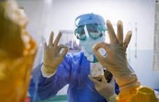 Index: Álhíreket adott ki a gyógyszerészeti kamara koronavírus-tájékoztatóként