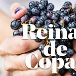 Sikertörténet – bor és nők