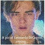 Ezen a képen ön is együtt fog sírni Leonardo DiCaprióval
