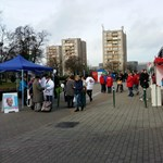 Választás a mi utcánkban: Csepelen bottal kergette el Gyurcsány híve a tiltakozót