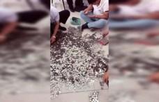 66 zsáknyi apróval fizetett egy autóért egy kínai férfi