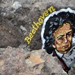 Beethoven levágott egy csomót a hajából, most elárverezik