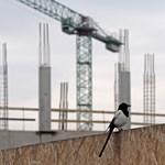 Napi: uniós pénzből pörgetné az építőipart az NFÜ