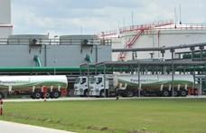 Írországból jöttek, mesterségük címere a bioetanol, ebből lettek milliárdosok