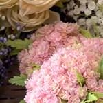 Megengedné a polgári polgármester, hogy nyitva tartsanak a virágüzletek