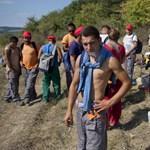 A tankötelezettség csökkentése óta 187-szer több a fiatalkorú közmunkás