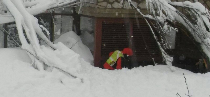 Még több eltűntet keresnek az olaszországi lavina után