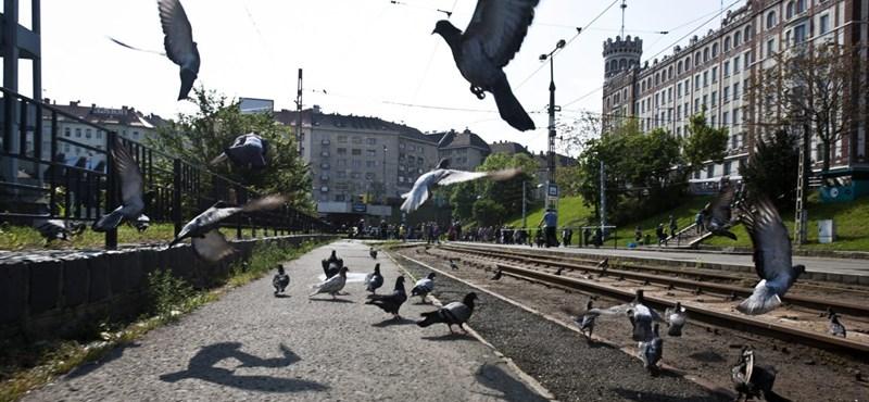 Széll Kálmán tér lett a Moszkva térből