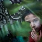 Az ellenzéket összehozta a magyar nyelvű oktatást ellehetetlenítő ukrán törvény