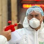 WHO: A koronavírus-járványt kontroll alatt lehet tartani