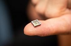 Ha ezt az apró chipet tényleg behelyezik az agyunkba, az sok mindent megváltoztathat