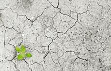 A klímakatasztrófa elleni közös stratégiáról egyezett meg több mint 150 ország