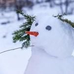 Dermesztő tréfa Ausztriában: hóembert gázolt a vonat