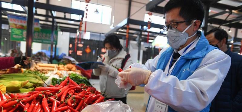 Felpumpált disznók és fertőzések miatt is tudnunk kell, hogy mit eszünk