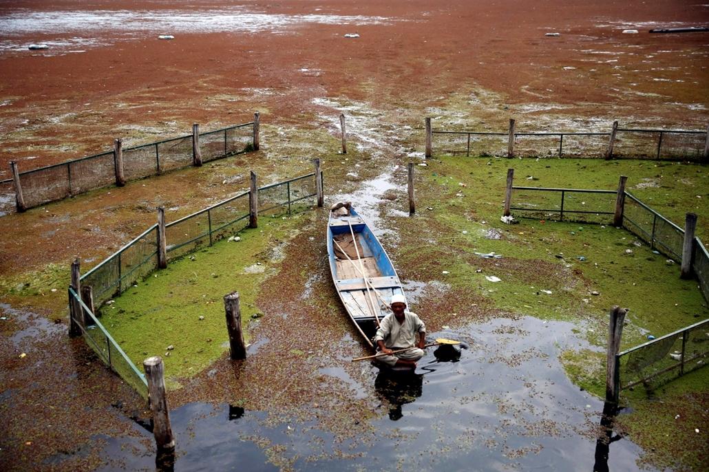 mti.16.09.21. - A Dal-tó szennyezett vizén evez egy férfi Dzsammu és Kasmír indiai szövetségi állam nyári fővárosában, Szrinagarban 2016. szeptember 21-én.