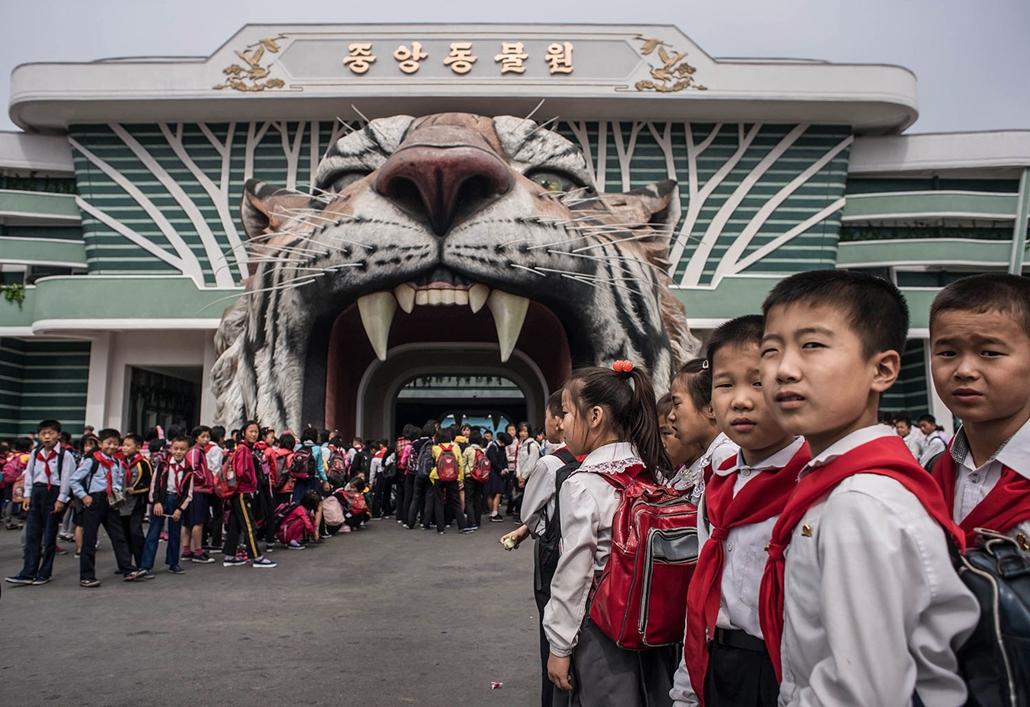 AFP - Nagyítás - Állati 2016 - 16.12.31. - Észak-koreai kisiskolások várakoznak a Phenjani Természettudományi Múzeum előtt