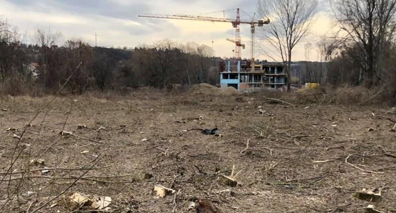 Megerősítette a kormányhivatal: védettség alatt álló erdőt irtottak ki a Balaton-parton