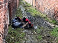 Angliában élő állatkínzó magyarokat ítélt el a bíróság