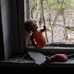 Meg akarta mutatni a Csernobilt a nevelőapjának, aki közölte, hogy már volt ott, és nem akarja többet látni