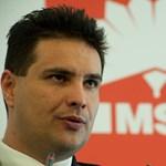 Mesterházy: az MSZP nem eshet újra a 2006-os hibába