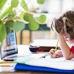 Ahol eleve hatékonyabb az iskola, ott jobban működik a távoktatás is – interjú Csapó Benővel