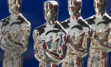Nincs újabb magyar Oscar, A víz érintése lett a legjobb film
