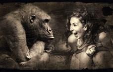 Az állat mindig riasztó sikolyt hallat, csak az ember kiált örömében