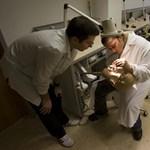 2013-as egyetemi rangsor: ezek a legjobb orvosi és egészségtudományi karok