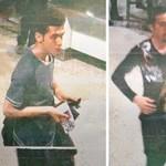 Eltűnt gép: az Interpol egyre biztosabb abban, hogy nem terrorcselekmény történt