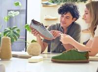Banánrosttal készít lebomló cipőket egy spanyol cég