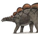 Ez nagy: 6 méter hosszú és közel 3 méter magas dinoszaurusz-csontvázat állítottak ki