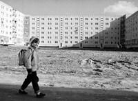 """Családi külkercégek vetették rá magukat az NDK-s Marshall-segélyre  – """"Eljött a paradicsom"""", 1990. április 5."""