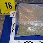 Újfajta pszichoaktív kábítószert foglaltak Vas megyében