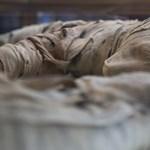 Több száz mumifikált állatot találtak Egyiptomban, íme, így néznek ki
