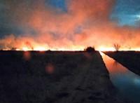 Eloltották a balatoni nádtüzet, 120 hektáron leégett a berek