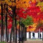 Három kihagyhatatlan program az őszi szünetre