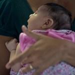 Csecsemőgondozási díjat igényelne egyéni vállalkozóként? Kemény koppanás lesz