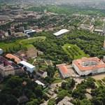 Kevesebb fát vágatna ki a közszolgálati egyetem az Orczy-parknál
