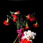 Gyűlöli a Valentin-napot? Küldjön rohadt virágot rosszakaróinak