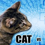 A Facebook kiderítette, amit mindig is tudni akart: mi a különbség a kutyások és a macskások között?