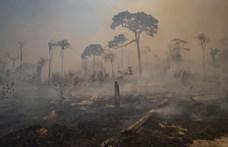 Zsákutcába vezet a klímaváltozás, de van még esély kifarolni
